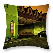 Somewhere In Rio 3 Throw Pillow