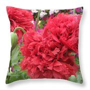 Somniferum Poppy 1 Throw Pillow
