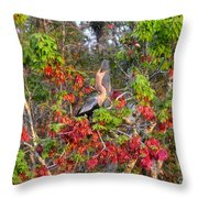 Song Of The Anhinga Throw Pillow