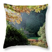 Song Of The Light 1. Throw Pillow