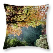 Song Of The Light. Throw Pillow