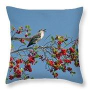 Song Of The Mockingbird Throw Pillow