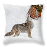 Song Of The Wild Throw Pillow