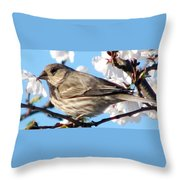 Song Sparrow Dining Out Throw Pillow