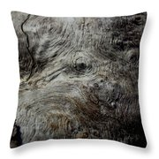 Songlines Series Throw Pillow