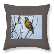 Songster Throw Pillow