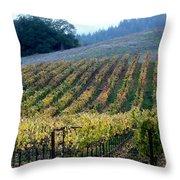 Sonoma County Vineyards Near Healdsburg Throw Pillow