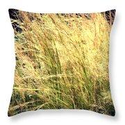 Sonoma Yellow Throw Pillow