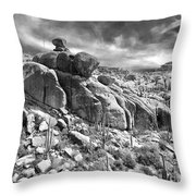Sonora Desert Throw Pillow