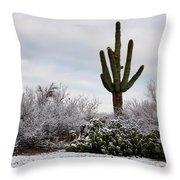 Sonora Desert Winter Throw Pillow