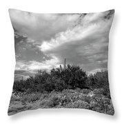 Sonoran Afternoon H10 Throw Pillow