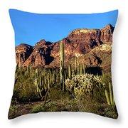 Sonoran Cacti Everywhere Throw Pillow