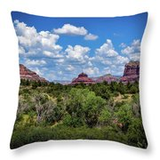 Sonoran Countryside Throw Pillow