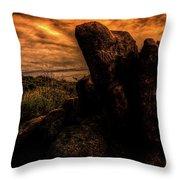 Sonoran Desert Early Morning Throw Pillow