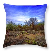 Sonoran Desert H1819 Throw Pillow