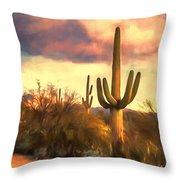 Sonoran Desert Morn Throw Pillow