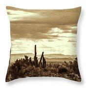 Sonoran Desert Mountains And Cactus Near Phoenix Throw Pillow