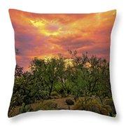 Sonoran Desert Sunset H44 Throw Pillow