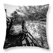 Sonoran Ghost Corral Throw Pillow