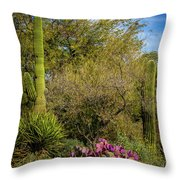 Sonoran Holiday Throw Pillow