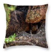 Sonoran Prairie Dog Throw Pillow