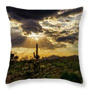 Sonoran Splendor  Throw Pillow