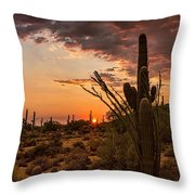 Sonoran Summer  Throw Pillow