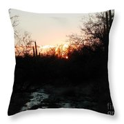 Sonoran Sundown Throw Pillow