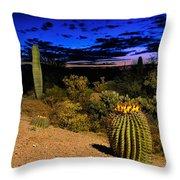 Sonoran Twilight Throw Pillow