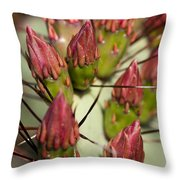 Soon To Bloom Throw Pillow