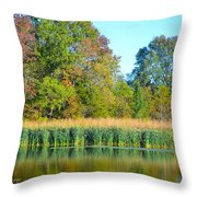 Soothing Reflections Throw Pillow