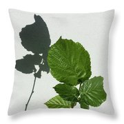 Sophisticated Shadows - Glossy Hazelnut Leaves On White Stucco - Vertical View Upwards Left Throw Pillow