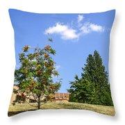 Sorb-tree Throw Pillow