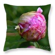 Sarah Bernhardt Peony Bud Throw Pillow
