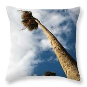 Sorrento Date Palms Throw Pillow