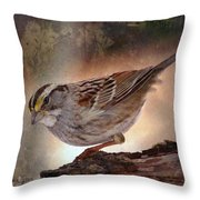 Soul Catcher...   Throw Pillow