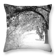 Soul Crossing Throw Pillow