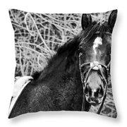 Soul Mate Throw Pillow