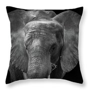 Soul Of The Planet, No. 11 Throw Pillow