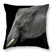 Soul Of The Planet, No. 3 Throw Pillow