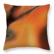 Soul Windows II Throw Pillow