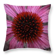 Soul's Edges Throw Pillow