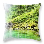 Sounds Behind The Falls Throw Pillow