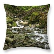 Sounds Of A Mountain Stream Throw Pillow