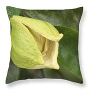 Soursop Fruit Blossom Throw Pillow