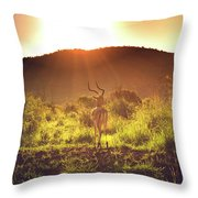 South Africa At Its Finest  Throw Pillow