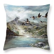 South Before Winter Throw Pillow
