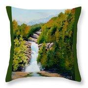 South Carolina Waterfall Throw Pillow
