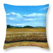 South Dakota Summer Throw Pillow