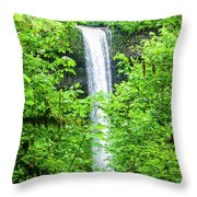 South Falls Throw Pillow